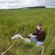 Grasses, Sedges, and Rushes program
