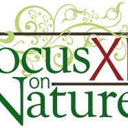 Focus on Nature in 2017