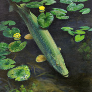 Bob Hines: National Wildlife Artist exhibit