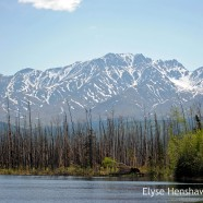 Our Own Alaska