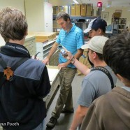 NYS Young Birders Club