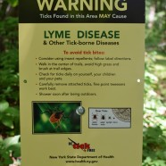 Tick and disease warning sign