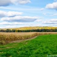 Goodbye to green and growing season
