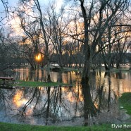 Flooding in the Area