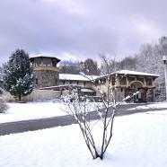 RTPI Winter Hours