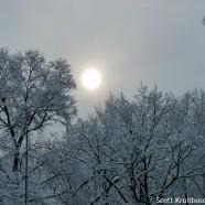 Low Winter Snowy Sun