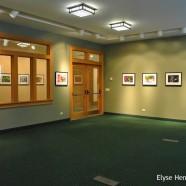 "Mathew Tekulsky's ""The Art of Backyard Bird Photography"""