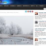 Winter Bird Forecast #4 – Winter Bird Wonderland!