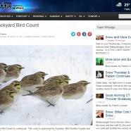 Winter Bird Forecast #6 – Great Backyard Bird Count