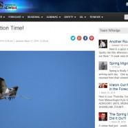 Spring Bird Forecast #1 – Spring Migration Time!