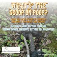 What's the Scoop on Poop?