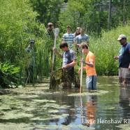 Where the Wild Things Are; Chadakoin River Ecology Showcase