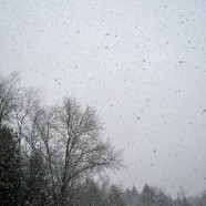 Lake Effect Snow Showers