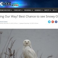 Winter Bird Forecast #3 – Heading Our Way?