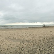 Wide Open Lake Erie