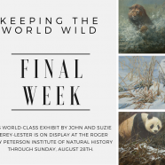 Keeping the World Wild – Final Week