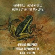 Rainforest Adventures – Tonight!