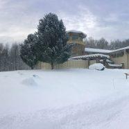 RTPI Winter Wonderland