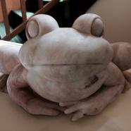 Ol' Three Toes the Bull Frog