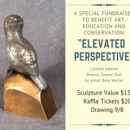 Bronze Owl Sculpture Raffle