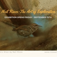 Neil Rizos: The Art of Exploration