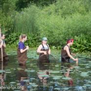 RTPI's Project Wild America Youth Ambassadors Take a Walk on Jamestown's Wild Side