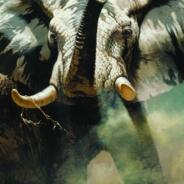 """RTPI to host """"Guy Coheleach: Wildlife in Art"""""""